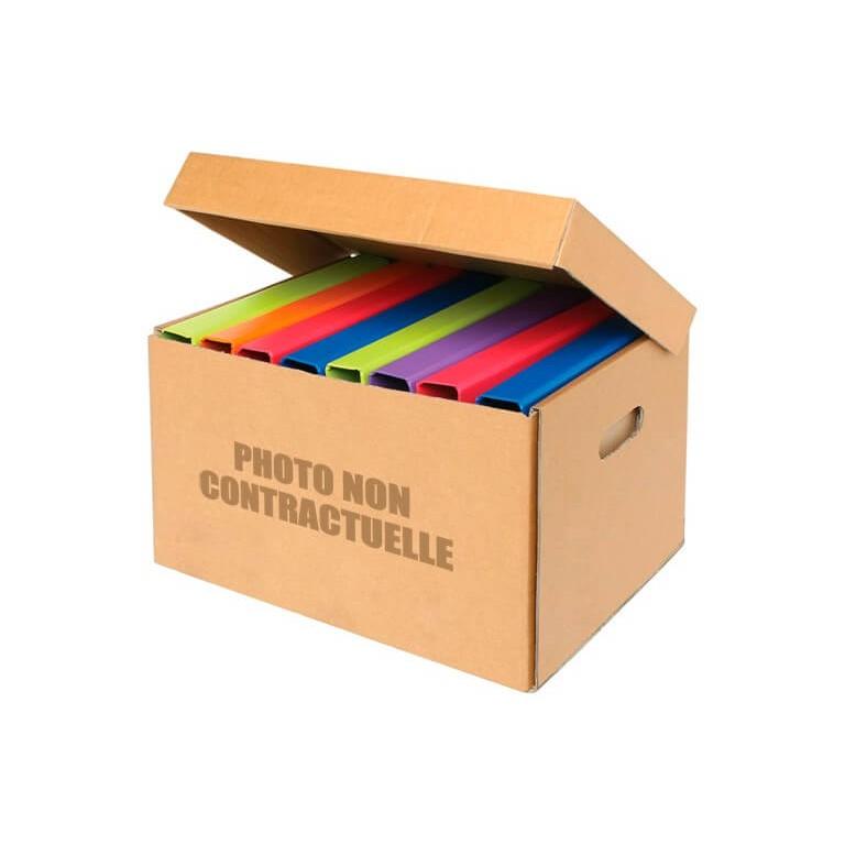 Caisse carton pour archive. Caisse carton avec poignées
